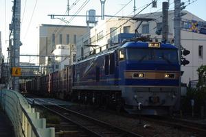 Imgp1528