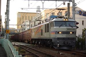 Imgp1560
