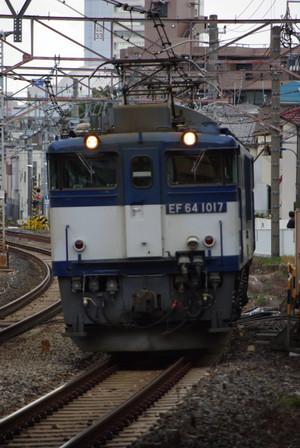 Imgp3994