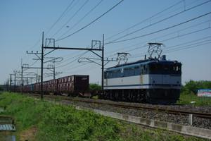 Imgp5561