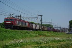 Imgp5589
